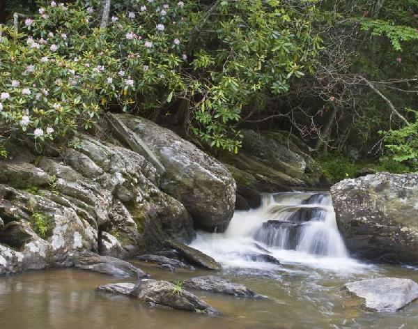Boone Fork by Lew Hann