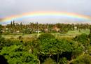 rainbow0806