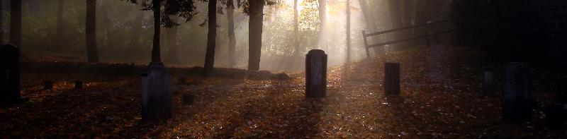 graves2new