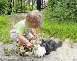 toddler with kitty