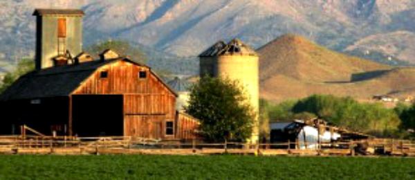 WL Farm