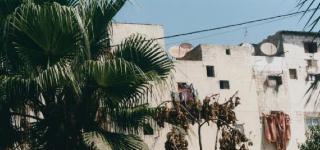 Yto Barrada Salon Marocain