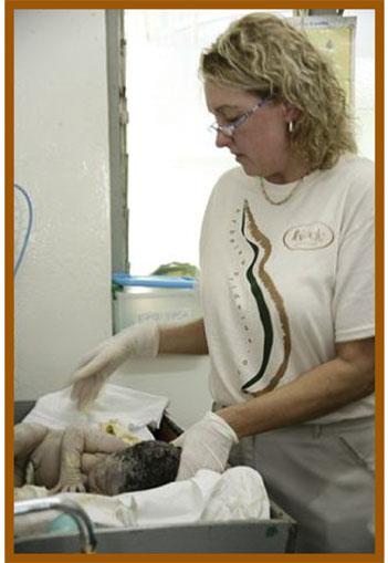 Medge doing a resuscitation in Ghana.