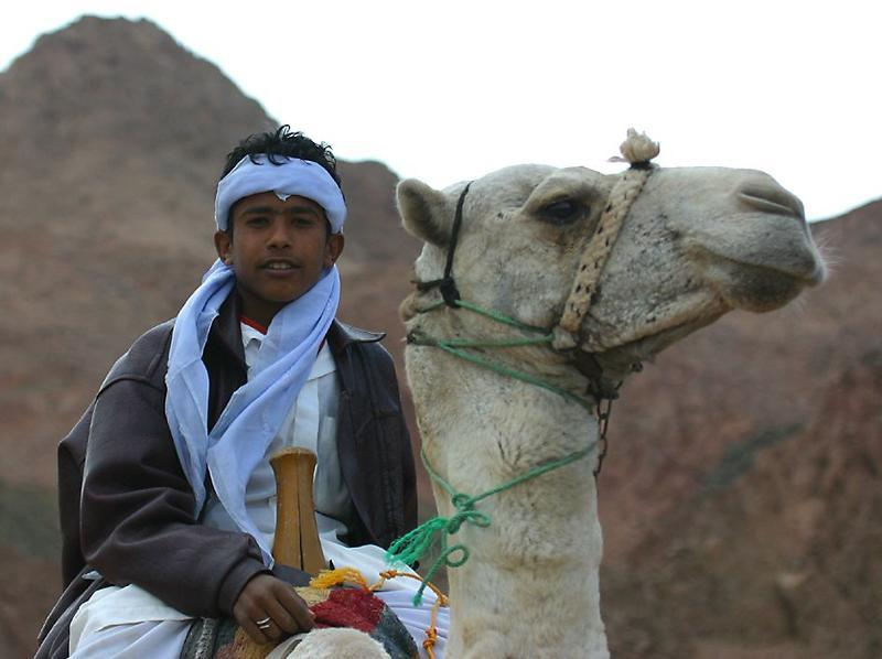 Bedouin Boy on Camel