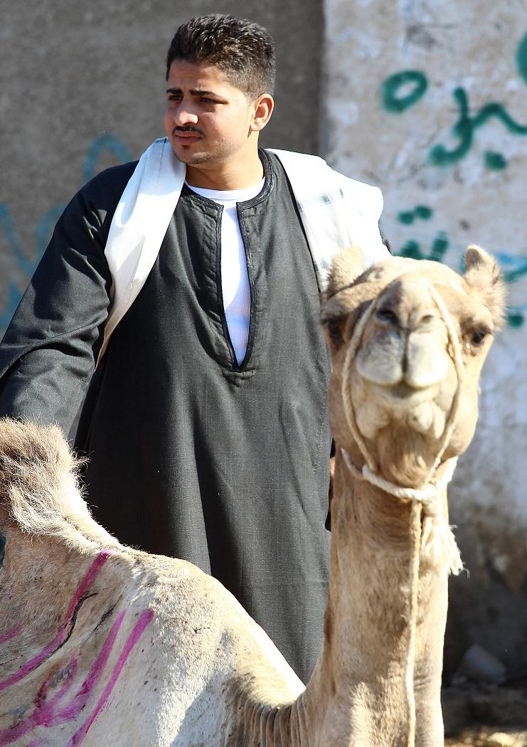 Camel Market 1
