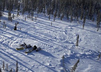 Wester Siberian Site