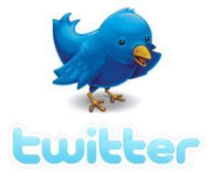 Twitter with Bird