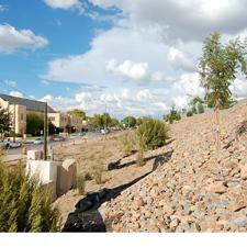 I-25 Landscaping