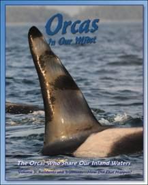 Orcas in Our Midst, volume 3, by Howard Garrett