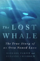 Lost Whale book...ver scaled