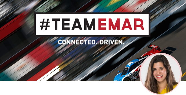 TEAMEMAR Newsletter