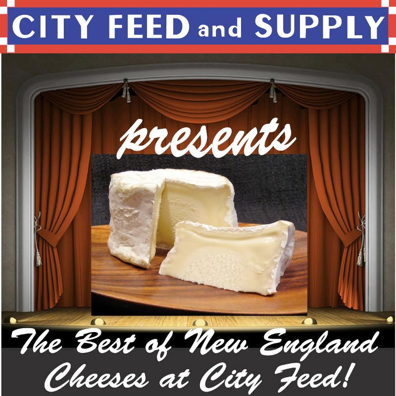 The Best of New England Cheese no text
