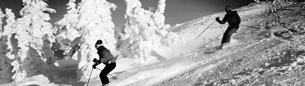two-skiers-header.jpg