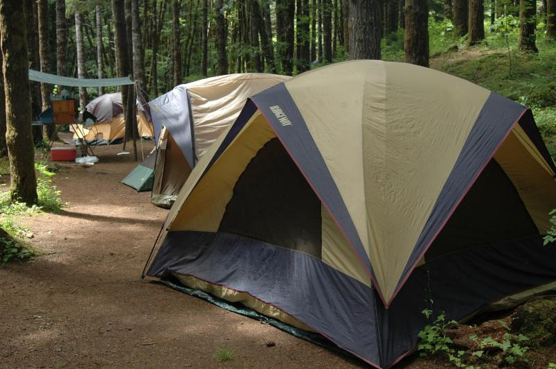 Camping at the Gales Creek Campground in the Tillamook State Forest