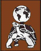 Turtle Will logo