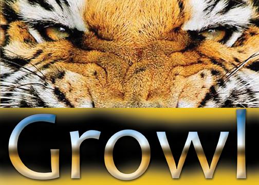GTOWL Tiger