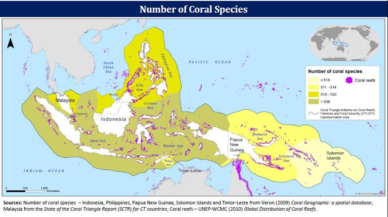 Map 10 concentration of coral species in the coral triangle click map to enlarge publicscrutiny Choice Image