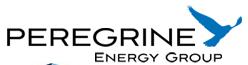 Peregrine Energy logo