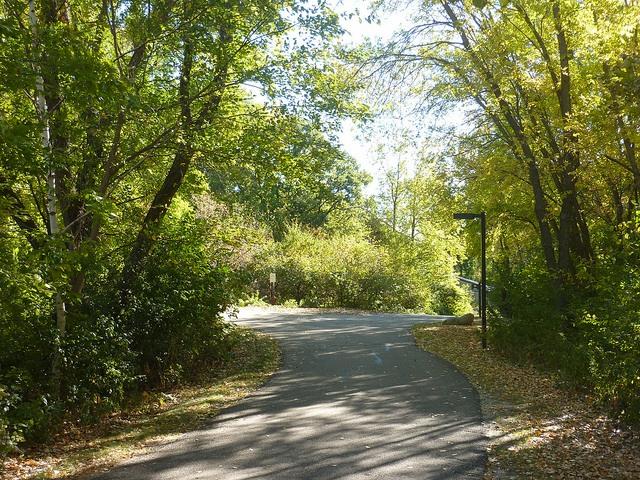 Richardson Nature Center trails