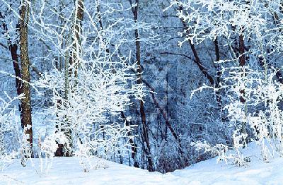 Snow - Minneapolis