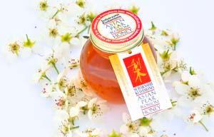 Honey Jar Go!