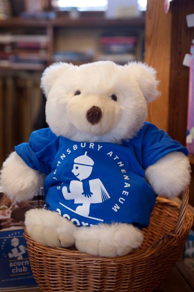 Acorn Club Bear