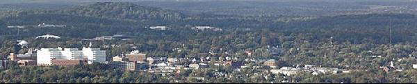 Charlottesville Landscape