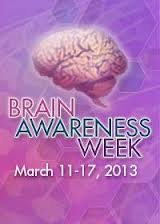 2013 Brain Awareness Week Chiappino