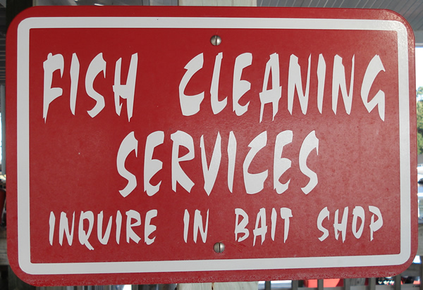 fish cleaning