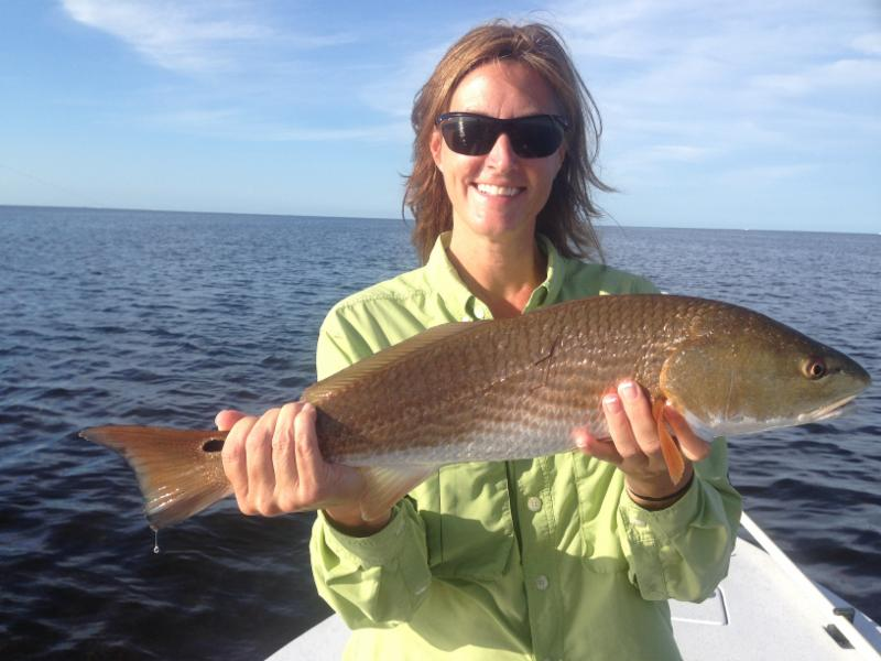 Sarah from gainesville fl caught this big redfish for Fishing in gainesville fl