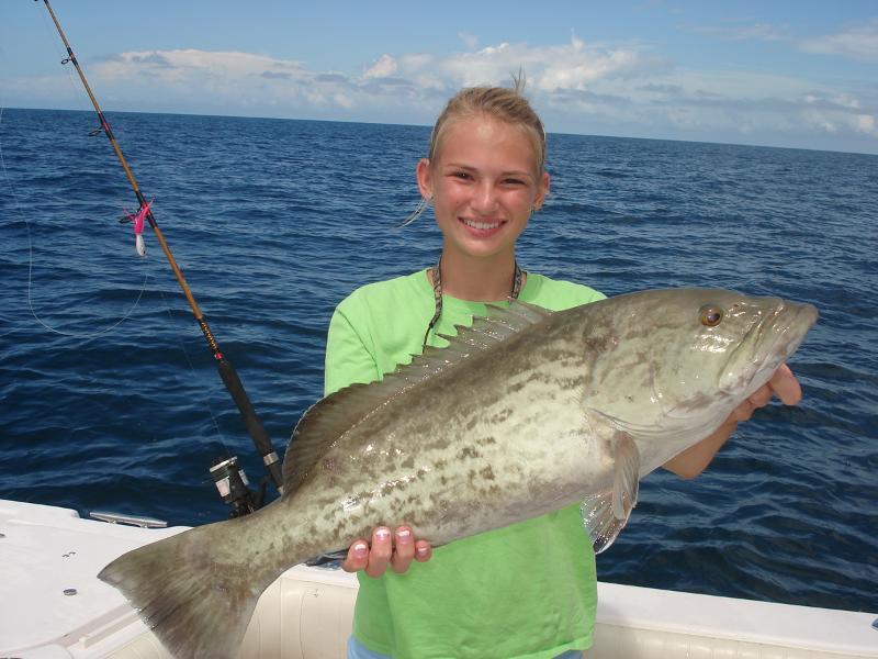 Chaeli gag grouper2