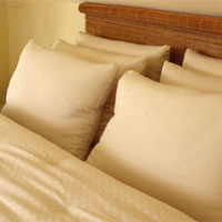 Holy  Lamb Organic Pillows