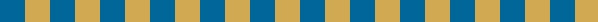 blue gold border