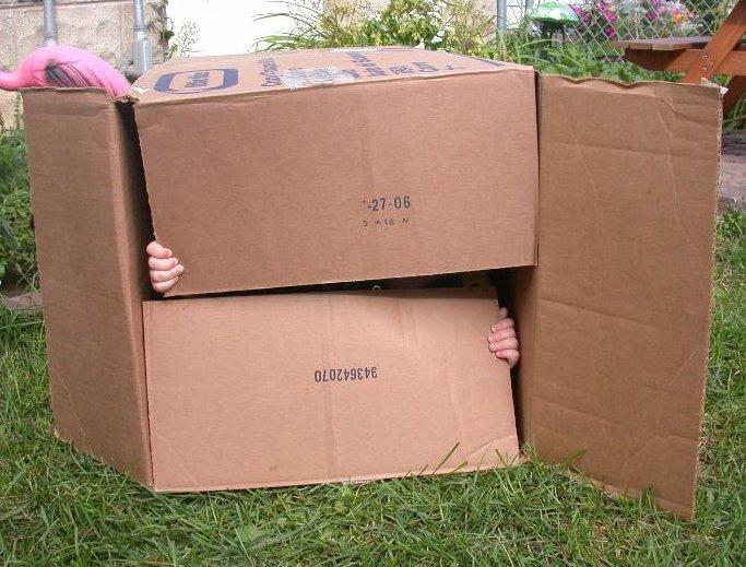 a simple toy - a cardboard box!