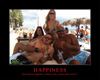 Happiness - Ibiza Sunbathing