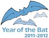 Year of the Bat logo