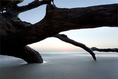 Jeckly Island 1 by Steve Malloy Desormeaux