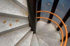 Orange Twist by Katherine Fuss