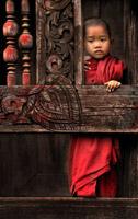 Orphan by Chris Kogut