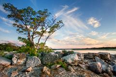 West Meadow Sunset by Steve Malloy Desormeaux