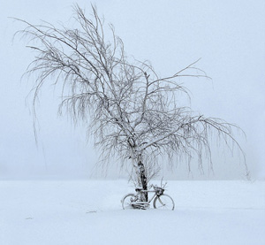 No Biking Today by Steve Knapp