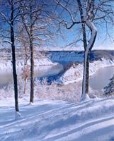 Winter Snow - Gary Thompson