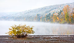 Morning at Hemlock Lake by Steve Malloy Desormeaux