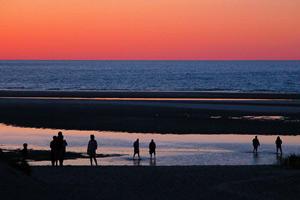 Cape Cod Sand Flats by Martin Nott