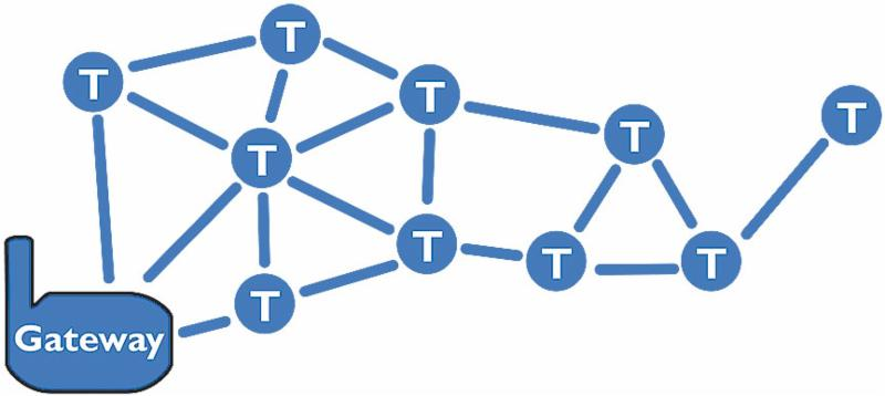 Pelican Mesh Network Graphic