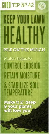 Mulch Tip