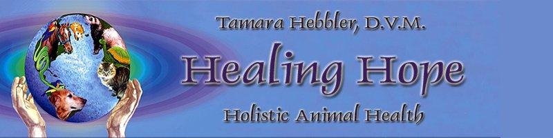 Healing Hope, Dr Tamara Hebbler