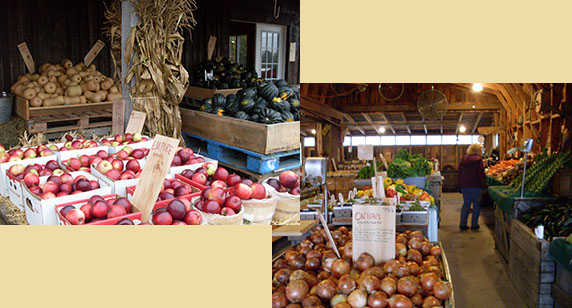 Beth's Farm Market, inside and out