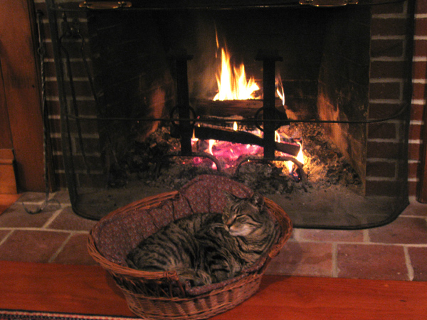 Tim by the fire