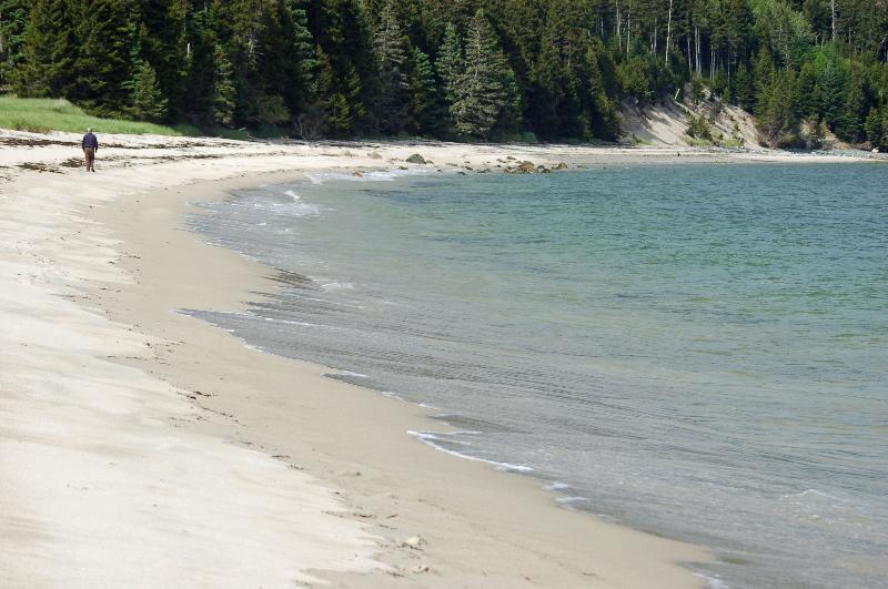 White sand beach of Roque Island Harbor
